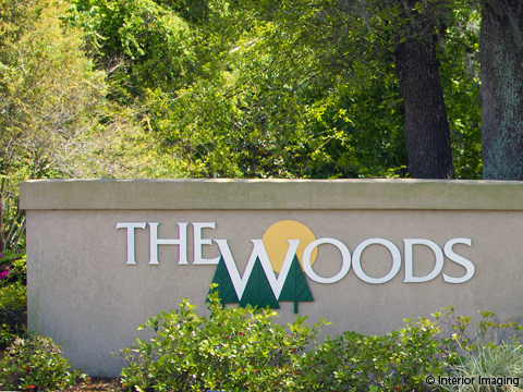 the-woods_480